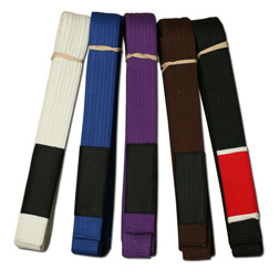 The Belt System Of Gracie Brazilian Jiu Jitsu – NEPA's Grappling